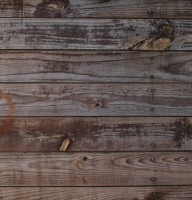 wood_texture_by_pabloalvin-d1igijr