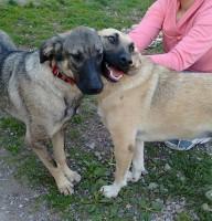 Nadja & Violetta 2