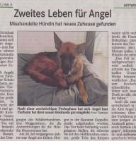 BT-Bericht-Angel-Zweites-Leben