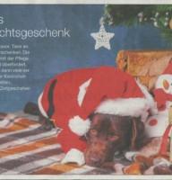 18.12.19 BNN Bericht Tiere als Weihnachtsgeschenk S.1